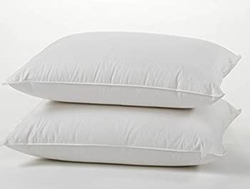 East Coast Bedding Premium Quality European 800 Fill Power 100% White Goose Down Pillow Set