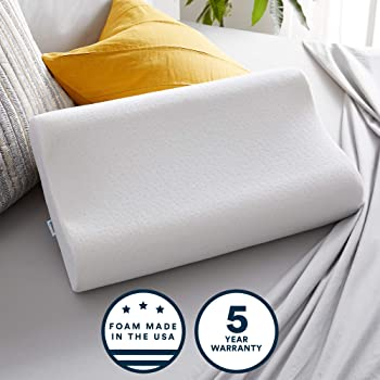 Sleep Innovations Contour Memory Foam Standard Size Pillow