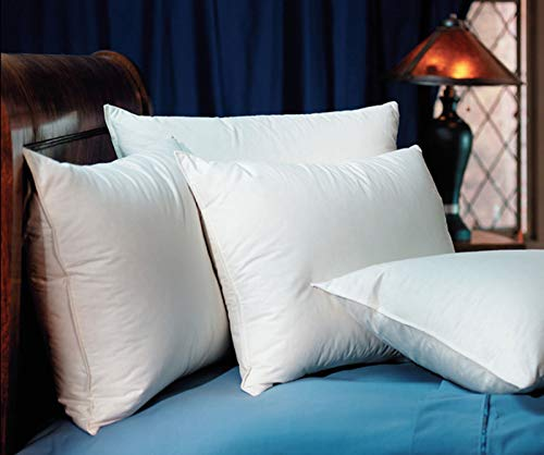 Pacific Coast Touch of Down Standard Pillow Set